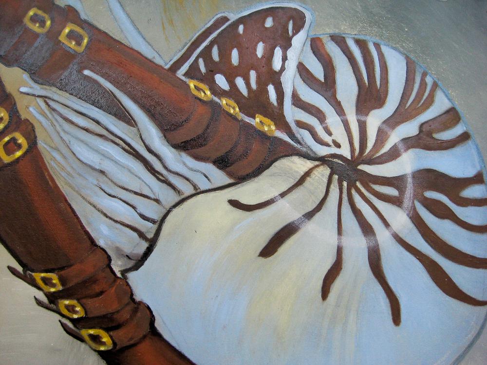 Cefalopodi Detail by Amarilli A.